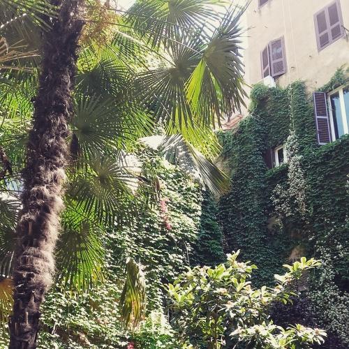 rome courtyard 3