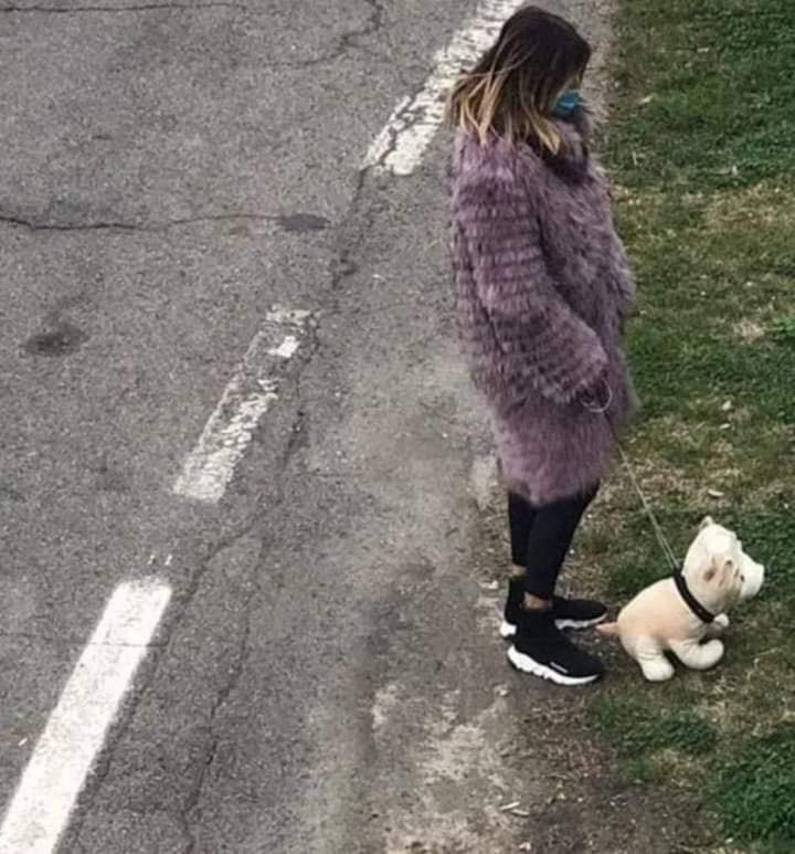 fake dog walk